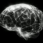Equipa de cientistas criam primeiro modelo em 3D do cérebro humano