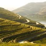 Douro é o destino turístico mais procurado para a passagem de ano