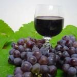 Vinhos de Lisboa exportados para Angola e Moçambique