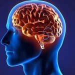 Cérebro sabe analisar a diferença entre o mundo real e o virtual