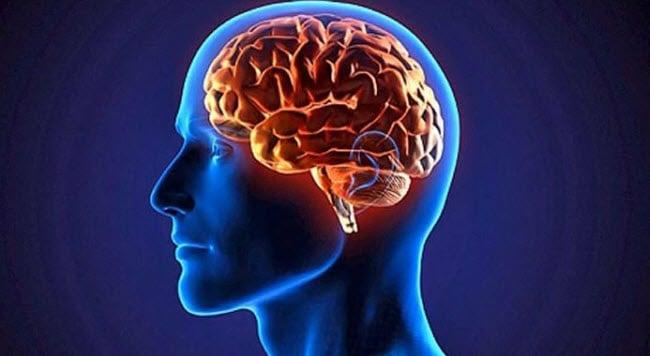 Cérebro sabe analisar a diferença entre o mundo real e o virtual ...