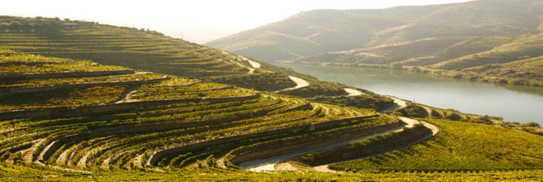 Douro eleito como melhor itinerario turistico fluvial da europa