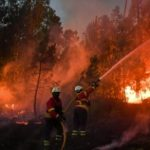 Incêndios florestais : 41 mortos e 63 feridos dos quais 16 graves