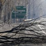 Portugueses entregam toneladas de alimentos e água a vítimas dos fogos na Austrália