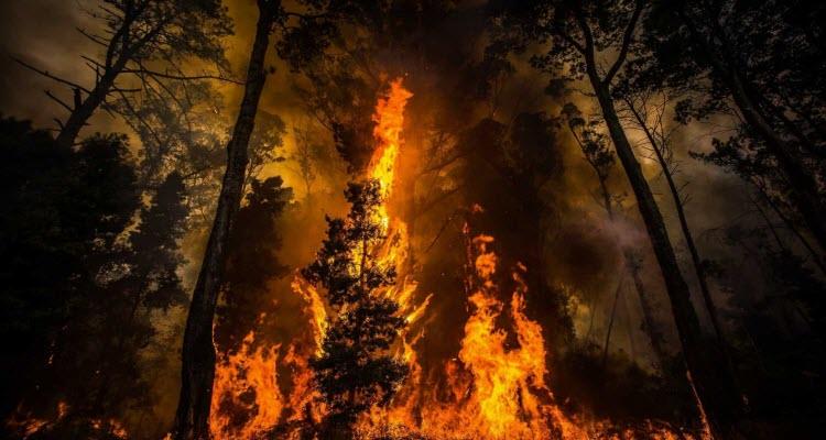 Pedrogao-Grande-incendios